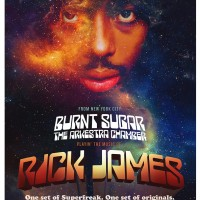 Burnt Sugar SuperFreaks the Rick James Playabook at This Ain't Hollywood, Hamilton Ontario
